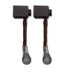 Boutique Paire de charbons pour moteur electrique 54/55 lbs